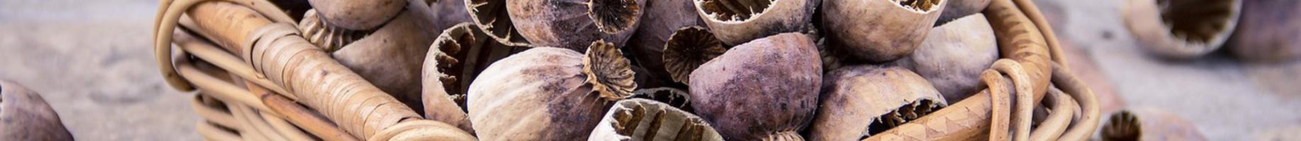 poppyseed-2557339_1280
