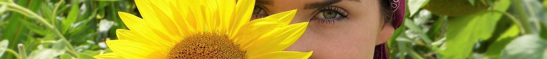 sun-flower-2699771_1280